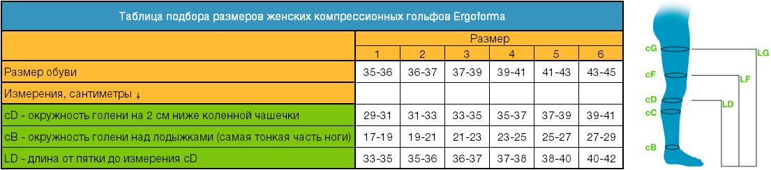таблица определения размеров гольфов Ergoforma
