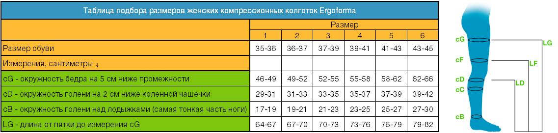 Определение размера колготок Ergoforma