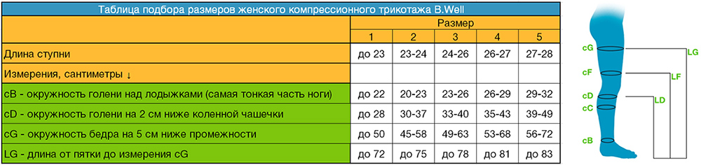 таблица размеров женских компрессионных чулков B.Well