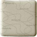 Biatain Ag / Биатен Аг - губчатая неадгезивная повязка с серебром, 10х10 см